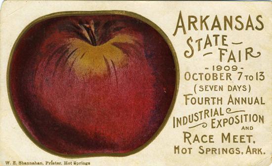 Arkansas State Fair 1909 postcard